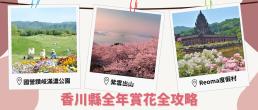 kagawa flowers